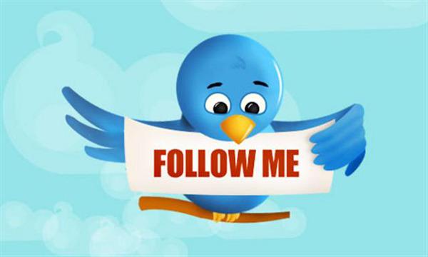 Dibuix Ocell Twitter